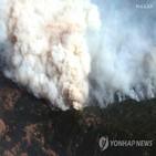 산불,도로,저수지,화재,대피,야생동물,주민,피해