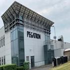 페가트론,공장,베트남