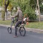 자전거,프로펠러,현지,도로,운송수단
