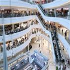 복합쇼핑몰,규제,의원,의무휴업,대형마트,점포,업계,휴업,유통산업발전법