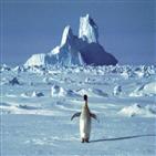 남극,코로나19,교대,확산,연구진
