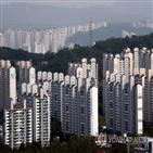 외국인,임대사업자,보유,서울,등록,증가,의원