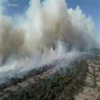 아마존,화재,열대우림