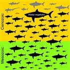 상어,메갈로돈,악상어목,몸집,이빨,멸종,크기
