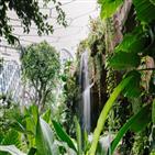 식물원,서울식물원,온라인,이번,코로나19,식물