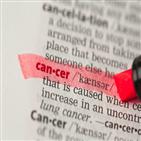 암보험,상품,갱신,보장,비교,보험료,최근