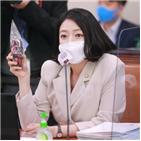 출전,남북단일팀,올림픽,단일팀,배현진,문체부