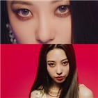 다혜,포이즌,데뷔,티저