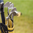브랜드,골프공,시장,가격,제품,판매,골퍼,골프,거래