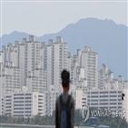 아파트,서울,평균,올해,가장,강남구,작년