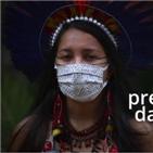 아마존,열대우림,원주민,브라질,촉구,사멜라