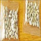 씨앗,중국,소포,미국