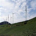 풍력,발전,태양광,벌목,산림,설비,설치,재생에너지,벌목량,면적