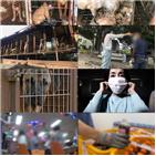농장,코로나19,마스크,불법,실화탐사대,생명훈련센터,농장주,주장