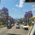 남아공,운전,도로,경우,경찰,왕복,운행,마스크