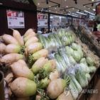 김장,가격,배추,한국물가정보,기준