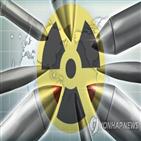 조약,발효,핵무기,핵보유국