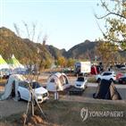 경북,축제,캠핑,지역,프로그램,준비,코로나19
