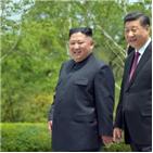 노동당,시진핑,김정은,주석,위원장