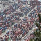 수출,한진해운,파산,투입,서비스,컨테이너선,컨테이너,임시선박,국내