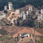 코로나,국정원,북한,예상