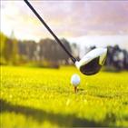 티타임,골프장,예약,암표상,골프,사이트,가격