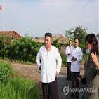 북한,중국,식량,지원,비료,올해