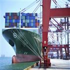 호주,중국,수입,대해,상품,보도,블룸버그통신,조치