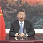 중국,경제,확대,주석,개방,수입박람회,발전