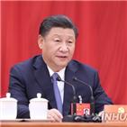중국,주석,개혁,국가,발전,시진핑,강조,조사,회의