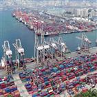 중국,기업,해당,수출통제법