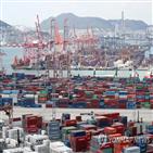 포인트,한국,성장률