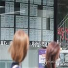 전세,전셋값,서울,김포,아파트,외곽,상황,경우,매매,아파트값