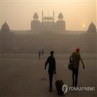 뉴델리,폭죽,인도,사용,이날,도시