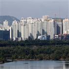 아파트,서울,매입,지역,올해,거주자