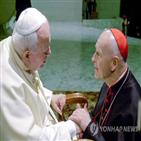 교황청,의혹,보고서,관련,은폐