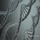 유전자,돌연변이,예측,유전질환