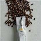 커피,스페셜티커피,만랩커피,카페,브랜드,시스템