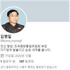 계정,북한,트위터,선전,운영,명의