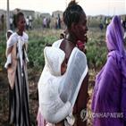 에티오피아,에리트레아,공항,내전,공격