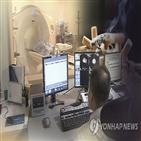 폐암,환자,수술,생존율,치료