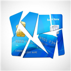 카드,소비자,신용카드,지출,사용