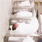 결핵,검사,잠복,신생아
