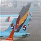 아시아나항공,대한항공,세계,코로나19,인수,여객,기준,초대형,양사,항공사