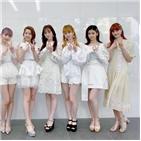 홍백가합전,일본,데뷔,출연
