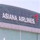 대한항공,항공사,마일리지,아시아나,노선,통합,아시아나항공,정부,직원,구조조정