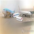 아시아나항공,지원,양사,구조조정,내년,고용,대한항공,통합