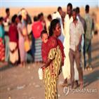 티그라이,에티오피아,에리트레아,아프리카,사태,정부,분쟁,에티오피아군
