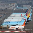 노선,대한항공,통합,아시아나항공,운항,시너지,중복,화물,상황,축소