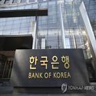 전자금융거래법,금융위,개정안,한은,한국은행,입장